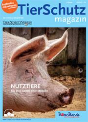 TS-Magazin